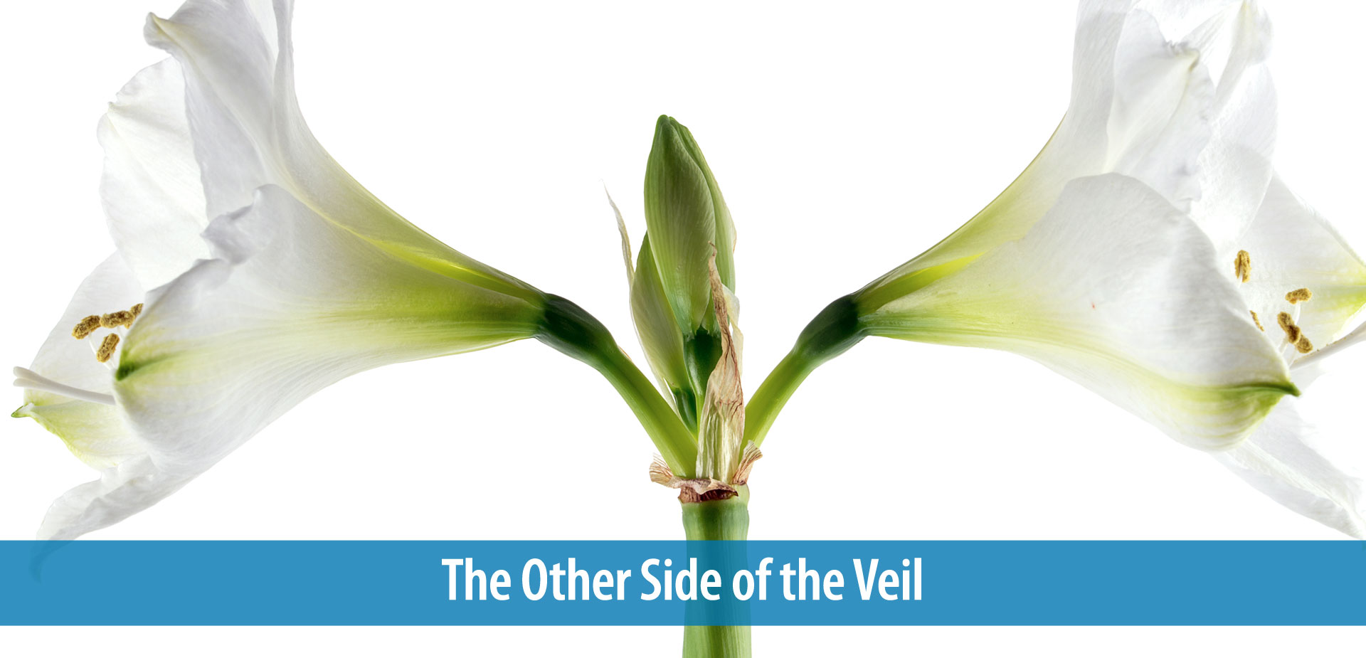 The Other Side of the Veil
